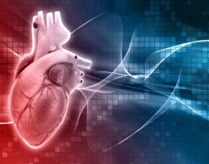 Dia Nacional da Doação de Órgãos